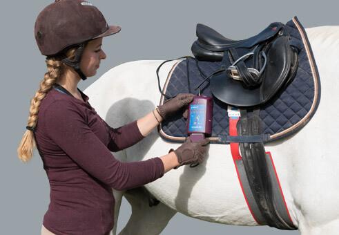 pliance : Pressure between saddle and horse | novel.de